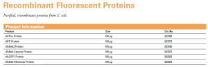 Recombinant Fluorescent Proteins
